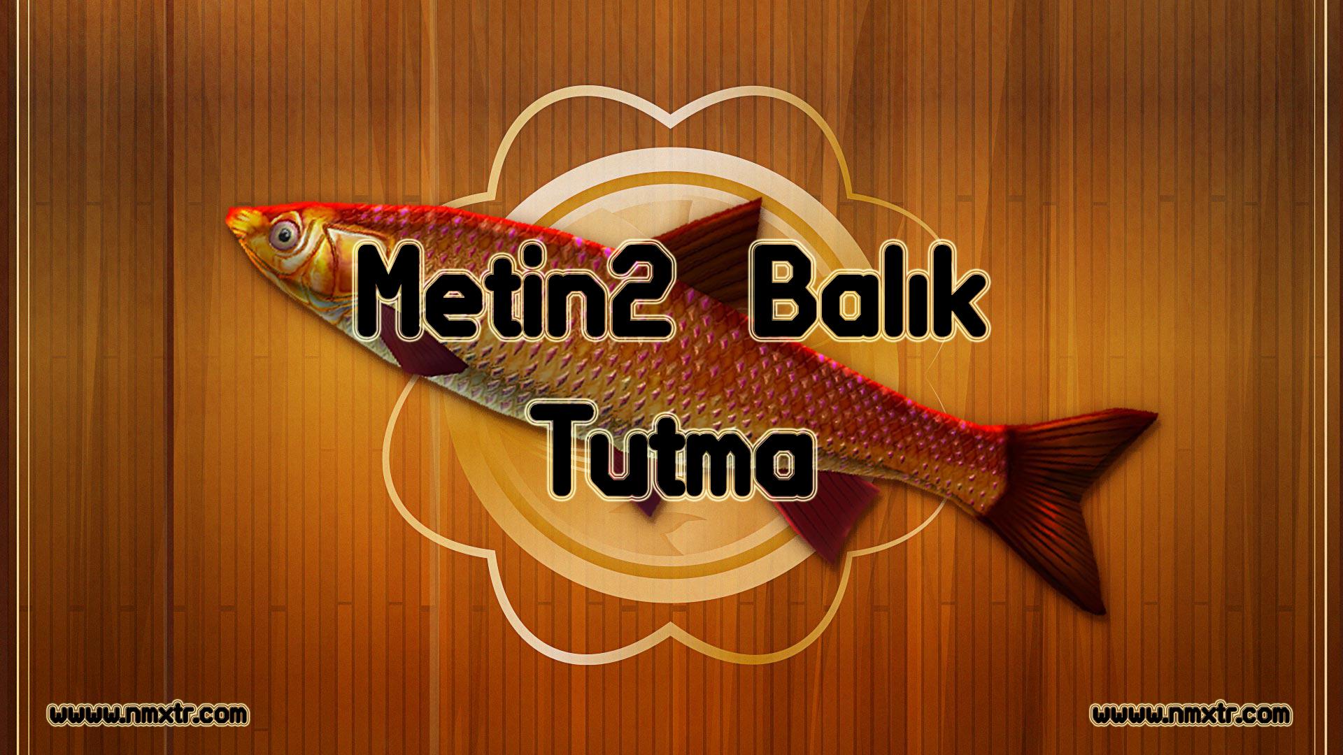 Metin2 Balık Tutma Taktiği