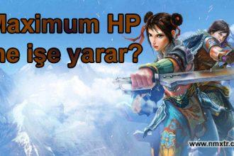 Maximum Hp ( Max HP ) ne işe yarar? ( Metin2 )